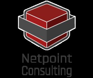 Netpoint Logo 435x255